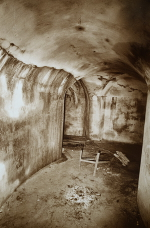 """From series """"Abandoned Kaunas Fortress"""""""