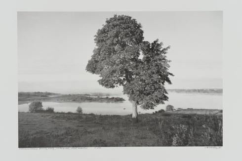 A lake Didžiulis in the early morning, Trakai distr.