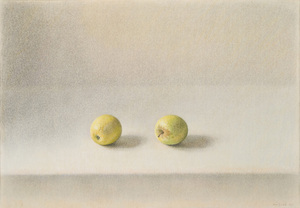Zwei gelbe Apfel (Du geltoni obuoliai)